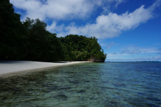Tổng thống Palau nói bị Trung Quốc gây áp lực, gọi điện 16 lần - 2