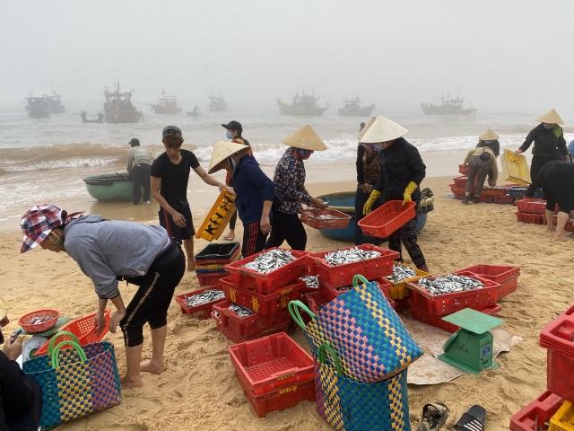 Trúng đậm cá nục mộng, ngư dân Quảng Bình thu tiền triệu mỗi đêm - 7