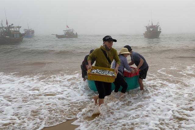 Trúng đậm cá nục mộng, ngư dân Quảng Bình thu tiền triệu mỗi đêm - 10