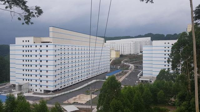 Chuyện lạ có thật: Xây khách sạn cao 9 tầng, lắp thang máy xịn xò chỉ để nuôi... lợn - 1