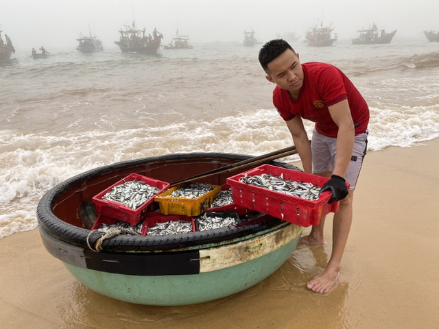 Trúng đậm cá nục mộng, ngư dân Quảng Bình thu tiền triệu mỗi đêm - 2