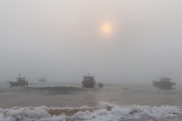 Trúng đậm cá nục mộng, ngư dân Quảng Bình thu tiền triệu mỗi đêm - 11