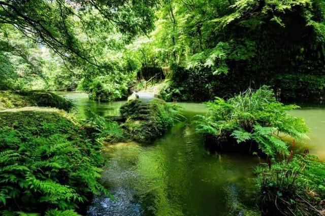 Thung lũng xanh Yamanaka - quê hương của nguồn suối nước nóng cổ đại - 2