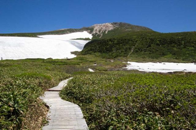Tìm về ba ngọn núi thánh của xứ Phù Tang - 5