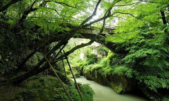 Thung lũng xanh Yamanaka - quê hương của nguồn suối nước nóng cổ đại - 6