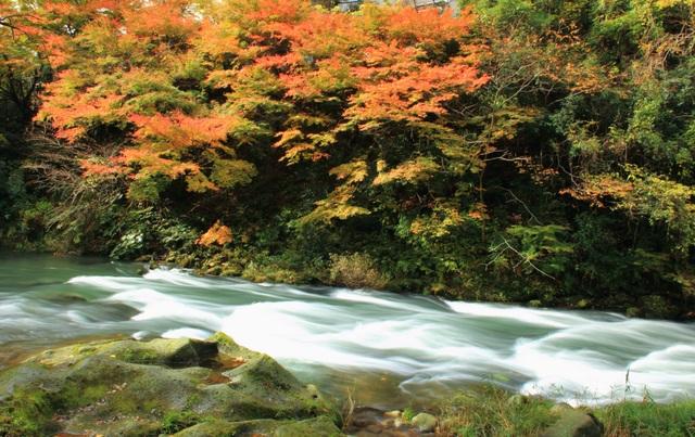Thung lũng xanh Yamanaka - quê hương của nguồn suối nước nóng cổ đại - 1