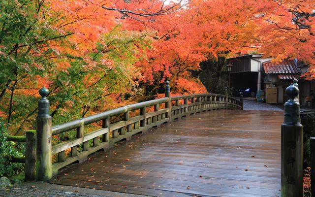 Thung lũng xanh Yamanaka - quê hương của nguồn suối nước nóng cổ đại - 8