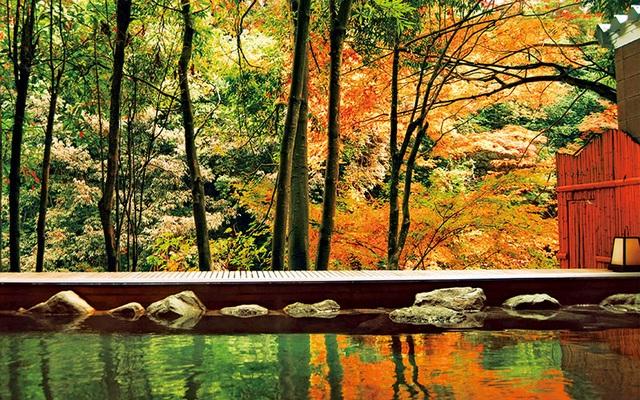 Thung lũng xanh Yamanaka - quê hương của nguồn suối nước nóng cổ đại - 3