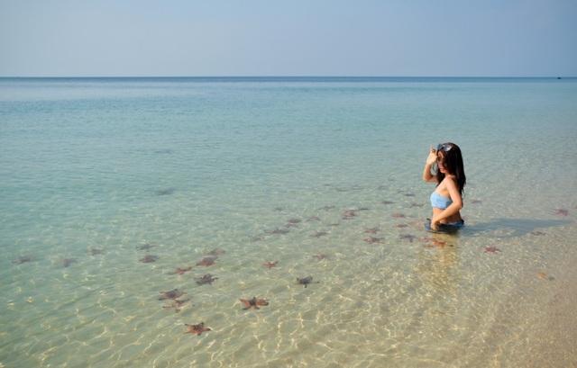 Dân mạng bùng nổ làn sóng phản đối việc bắt sao biển Phú Quốc để sống ảo - 5