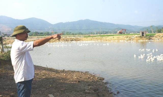 Từ đáy 30.000 đồng/kg, giá vịt trái mùa tăng giúp người nuôi hái tiền - 2