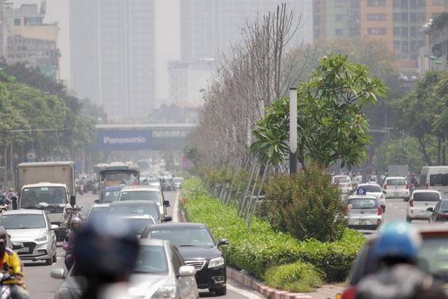 Hàng phong lá đỏ thất thủ ở Hà Nội, tiêu tan giấc mộng trời Âu - 7