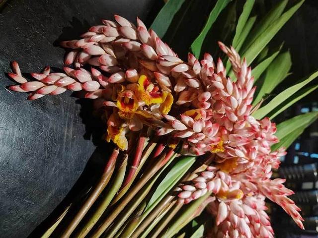 Hoa dại bờ bụi siêu đắt đỏ, mối buôn bán 2.000 cành/ngày - 1