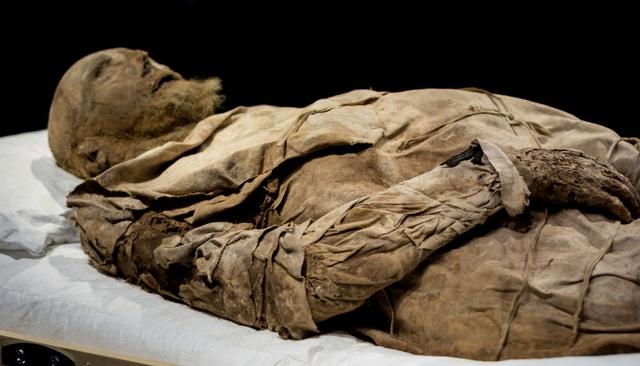 Giải mã xác ướp giám mục được chôn cùng một bào thai cách đây 350 năm - 3