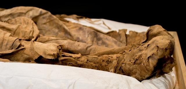 Giải mã xác ướp giám mục được chôn cùng một bào thai cách đây 350 năm - 4