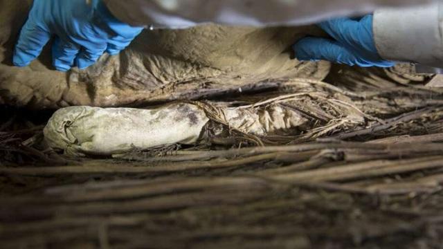 Giải mã xác ướp giám mục được chôn cùng một bào thai cách đây 350 năm - 2