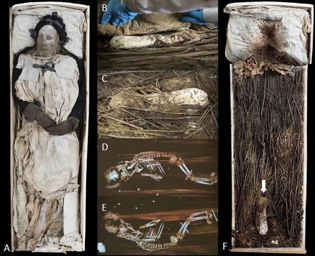 Giải mã xác ướp giám mục được chôn cùng một bào thai cách đây 350 năm - 1