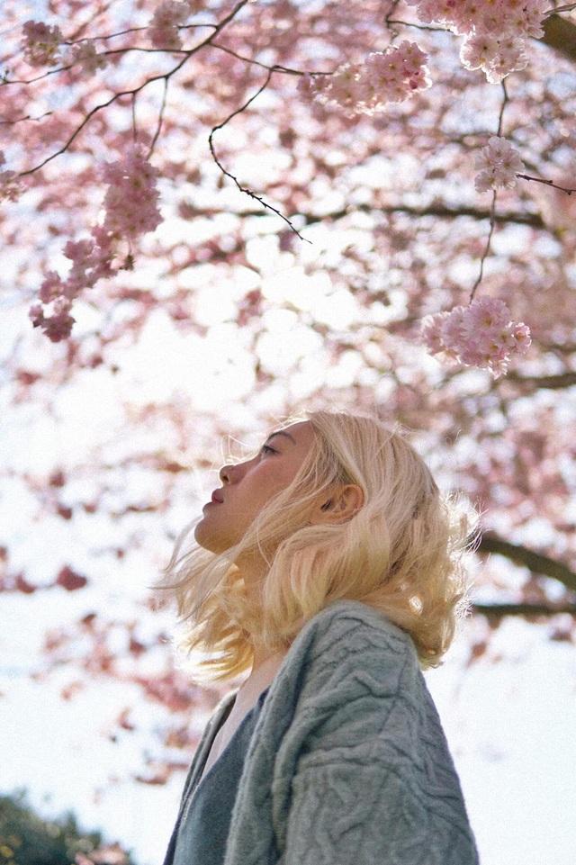 Mùa hoa anh đào đẹp nao lòng qua góc nhìn nữ sinh Việt tại Anh - 3