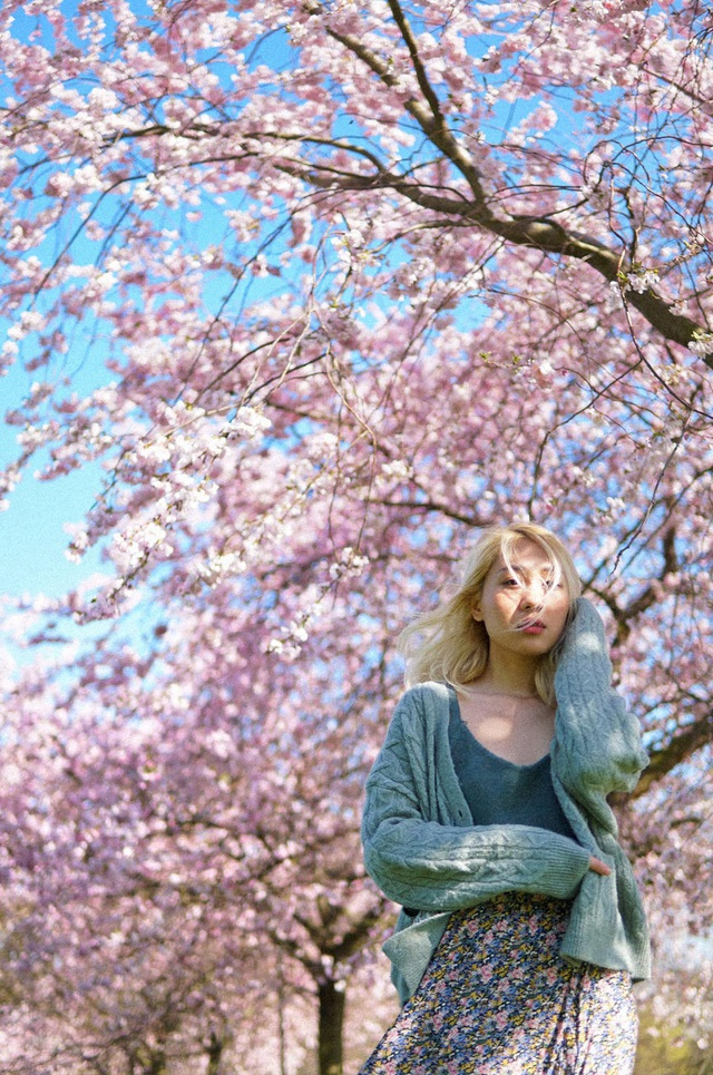 Mùa hoa anh đào đẹp nao lòng qua góc nhìn nữ sinh Việt tại Anh - 5