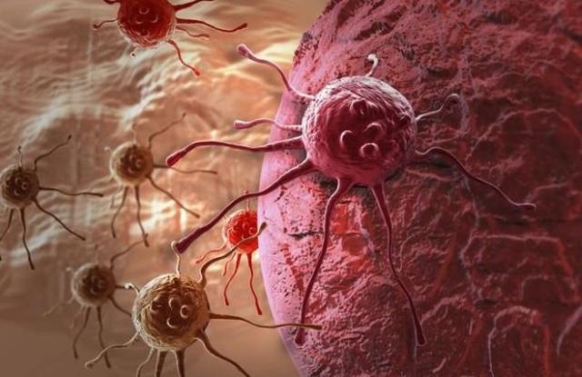 Hợp chất mới ngăn chặn sự phát triển của tế bào ung thư - 1
