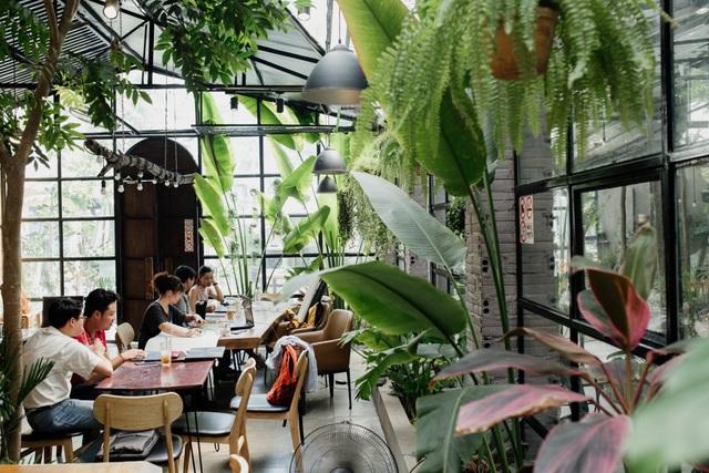 Tránh nắng ở những quán cà phê tràn ngập cây xanh giữa lòng Thủ đô - 1