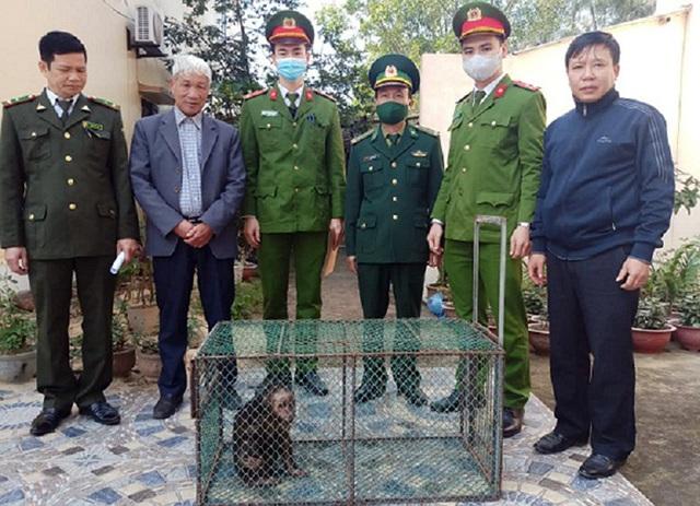 Tiếp nhận, cứu hộ 64 cá thể động vật hoang dã nguy cấp, quý hiếm - 1
