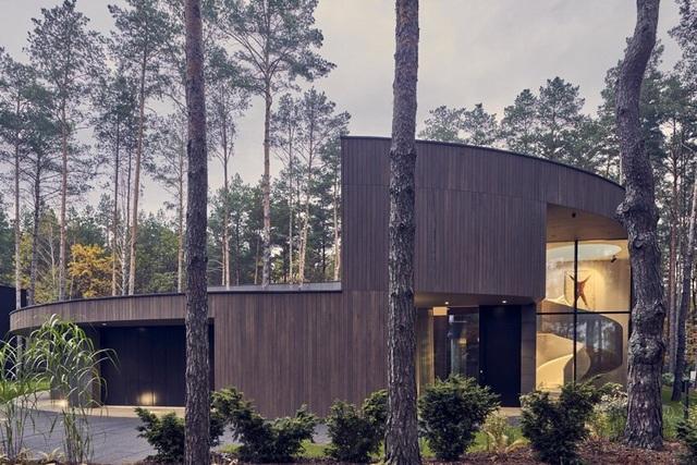 Ngôi nhà hình khúc cây ẩn giữa rừng thông  - 2