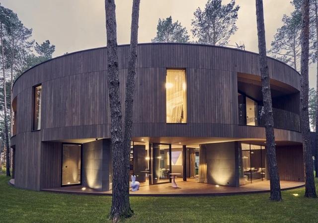 Ngôi nhà hình khúc cây ẩn giữa rừng thông  - 1