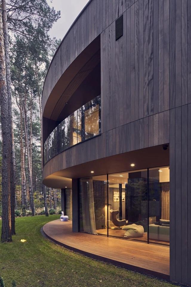 Ngôi nhà hình khúc cây ẩn giữa rừng thông  - 3
