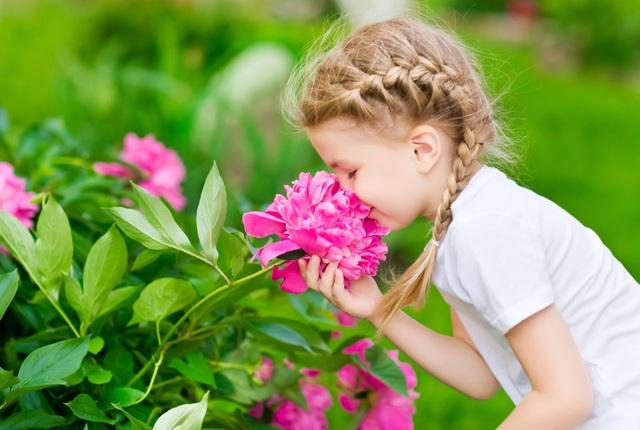 Vì sao hoa lại có mùi hương? - 1