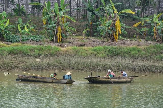 Nhọc nhằn nghề cào hến trên sông Lèn - 1