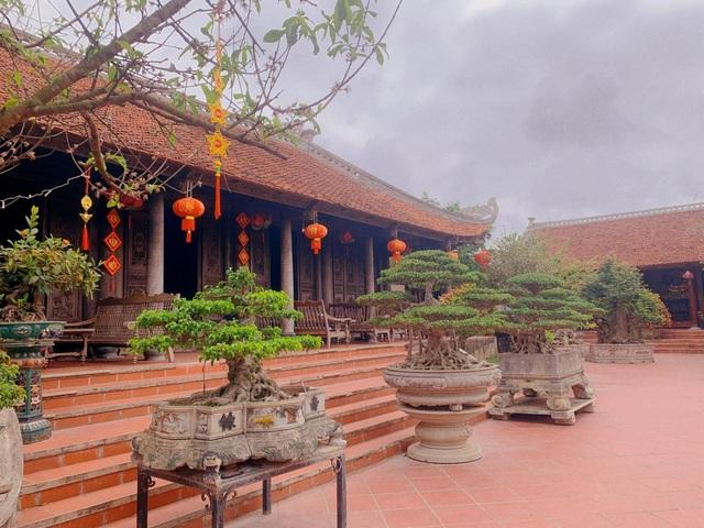 Biệt phủ 1.700m2 toàn cây cảnh bạc tỷ của gia đình ở Nam Định - 3