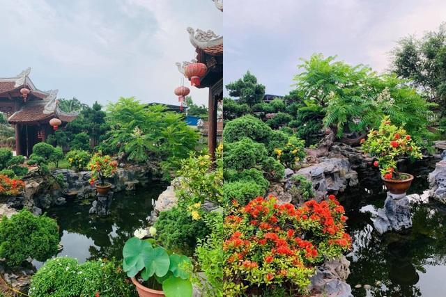 Biệt phủ 1.700m2 toàn cây cảnh bạc tỷ của gia đình ở Nam Định - 10