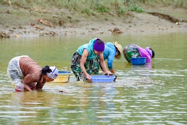 Nhọc nhằn nghề cào hến trên sông Lèn - 3