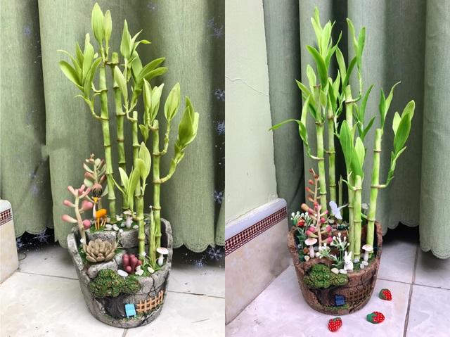 Đất sét đơm hoa kết trái dưới bàn tay khéo léo của 9X Sài Gòn - 11
