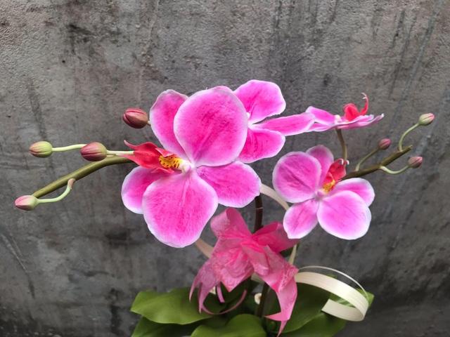 Đất sét đơm hoa kết trái dưới bàn tay khéo léo của 9X Sài Gòn - 2