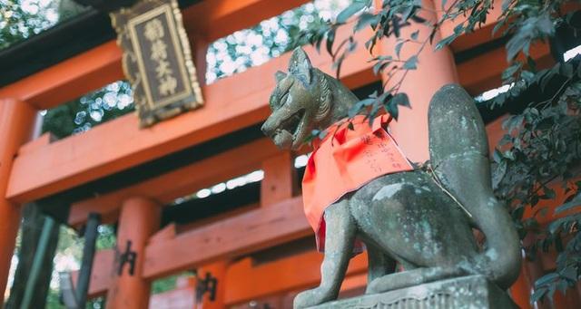Cáo Inari - Linh vật thiêng đầy mê hoặc của xứ Phù Tang - 1
