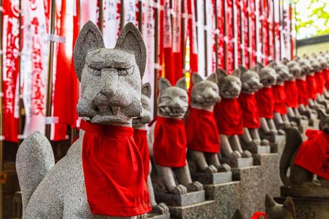 Cáo Inari - Linh vật thiêng đầy mê hoặc của xứ Phù Tang - 3