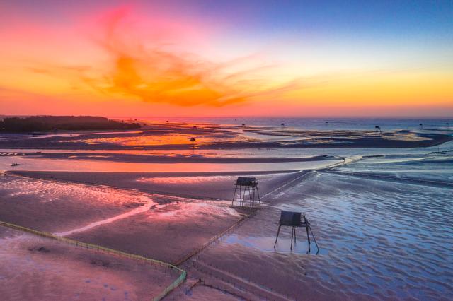 Sửng sốt vẻ đẹp của cánh đồng nuôi ngao trên bãi biển Thái Bình - 3