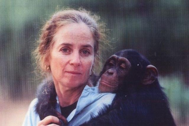 Lạ lùng người phụ nữ vào rừng sống kiểu tinh tinh trong 7 năm - 1