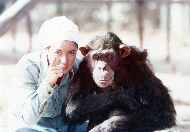 Lạ lùng người phụ nữ vào rừng sống kiểu tinh tinh trong 7 năm - 2