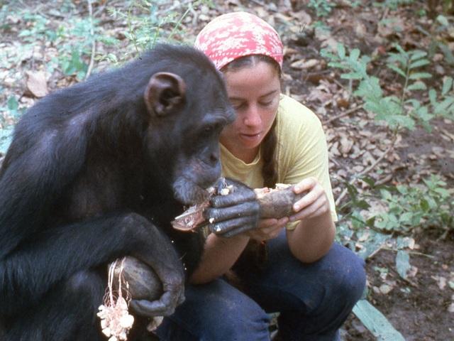 Lạ lùng người phụ nữ vào rừng sống kiểu tinh tinh trong 7 năm - 3