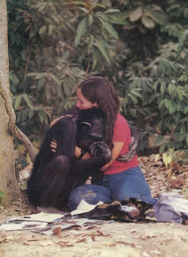 Lạ lùng người phụ nữ vào rừng sống kiểu tinh tinh trong 7 năm - 5