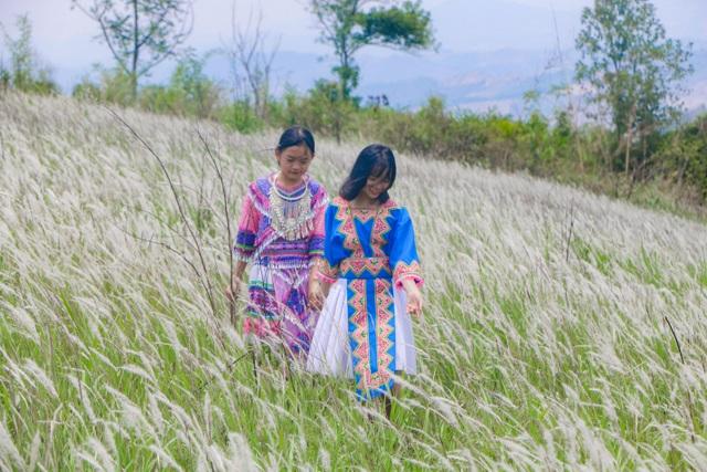 Thiếu nữ HMông khoe sắc xinh đẹp bên đồi cỏ tranh trắng muốt Đắk Nông - 5