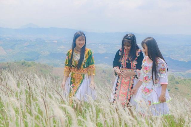 Thiếu nữ HMông khoe sắc xinh đẹp bên đồi cỏ tranh trắng muốt Đắk Nông - 6