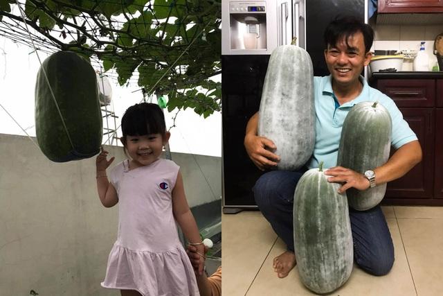 Vườn sân thượng rau trái lạ có kích thước khổng lồ của ông bố Sài Gòn - 15