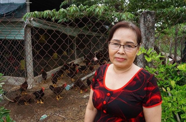 Lão nông Tiền Giang giúp hàng xóm khá lên nhờ giống gà... đặc chủng - 4