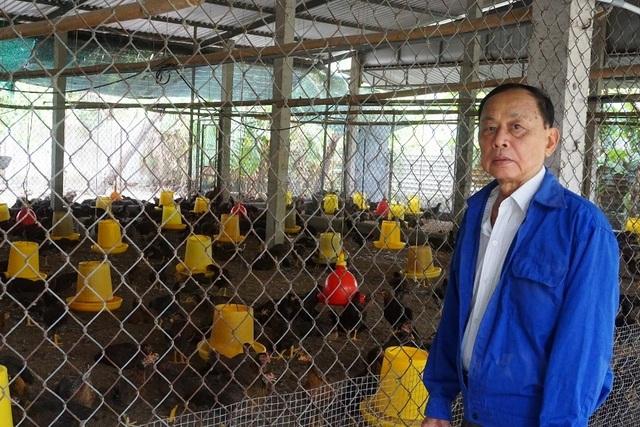 Lão nông Tiền Giang giúp hàng xóm khá lên nhờ giống gà... đặc chủng - 1