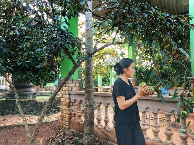 Gia đình ở Đắk Lắk rời phố thị, về quê làm vườn bội thu rau trái - 10