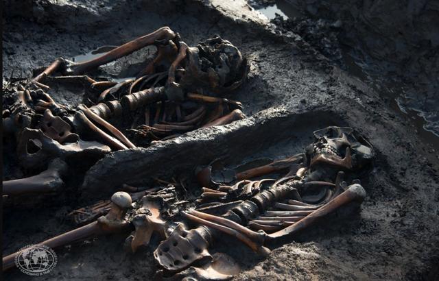 Các nhà khoa học muốn nhân bản vô tính chiến binh 3.000 năm tuổi - 2