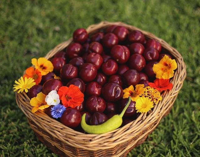 Rau tươi, trái ngọt trĩu trịt trong vườn nhà của cô gái ở Australia - 10